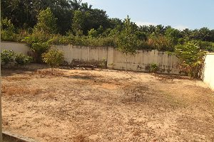 3-kluang-homestay-villa-backyard-300-x-200